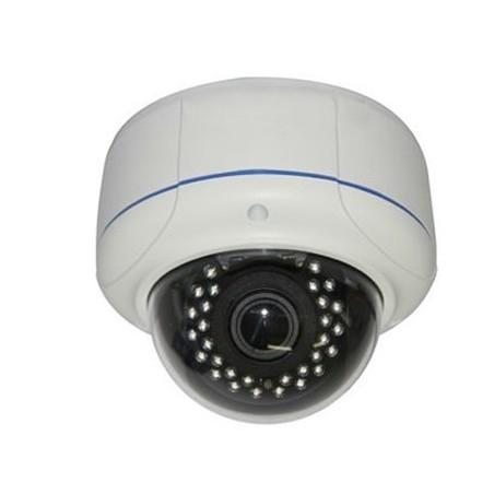 Utomhus PoE IP-domekamera 1.3MP IR, Ecoline